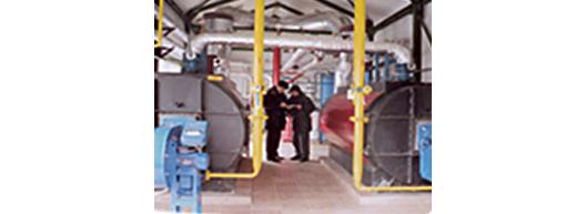 [写真] モルディブ:バイオマス発電