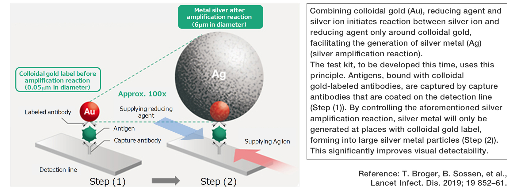 [Silver amplification technology for use in the antigen test kit to be developed]