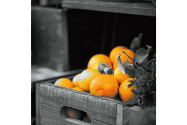 Imagem de um cesto de laranjas com filtro Parcial Laranja aplicado onde tudo, exceto as laranjas, é preto e branco