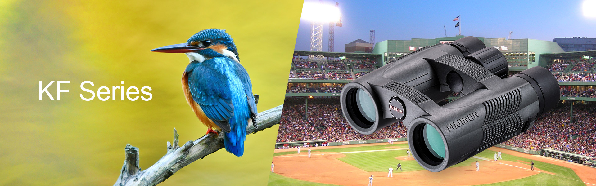 [photo] Close up of a bluebird on a tree branch with the text KF Series and a KF Series Binoculars with a packed baseball stadium in the background
