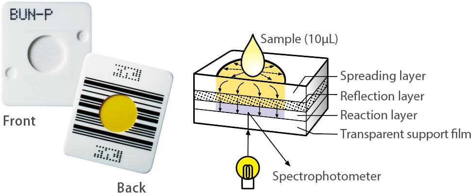 [imagem] Composição da lâmina DRI-CHEM de película multicamadas: camada de espalhamento, camada de reflexão, camada de reação, película de suporte transparente e espectrofotômetro