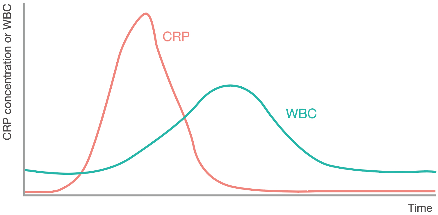 [image] Graph of CRP (red line) or WBC (green line) concentration over time