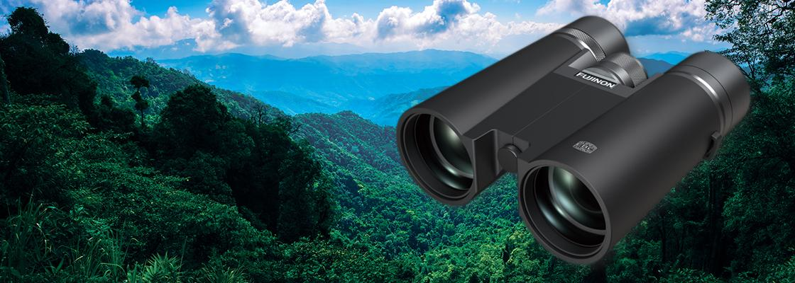 HYPER-CLARITY Series with an above the ground view of the forest and mountains background