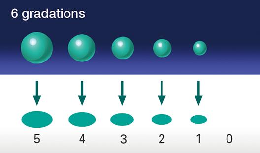 [imagen] 6 gradaciones de tinta, que van de 5 a 0