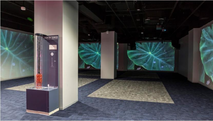 [foto] Salón de bienvenida de la Torre Tokio con sistemas FP-Z5000 que proyectan imágenes de hojas en las paredes