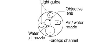 [image] Tip of scope with parts - light guide, forceps channel, objective lens, air/water nozzle, and water jet