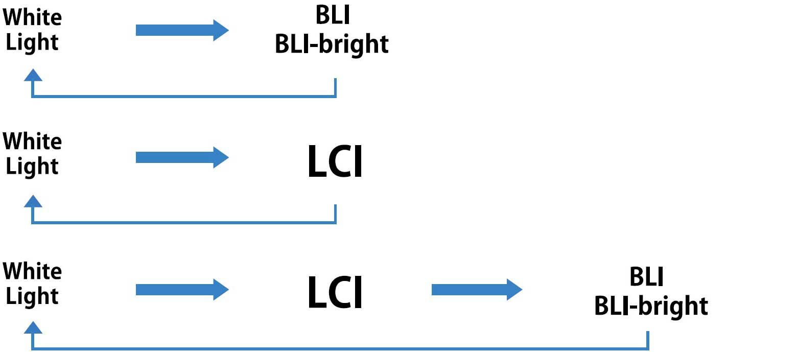 [image] White Light mode can be switched to BLI-Bright mode and to LCI mode