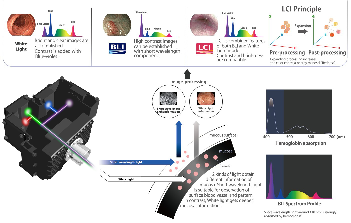[image] White Light, Blue Light Imaging, Linked Color Imaging modes