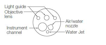[image] Tip of scope with parts - light guide, lens guide, water jet, instrument channel