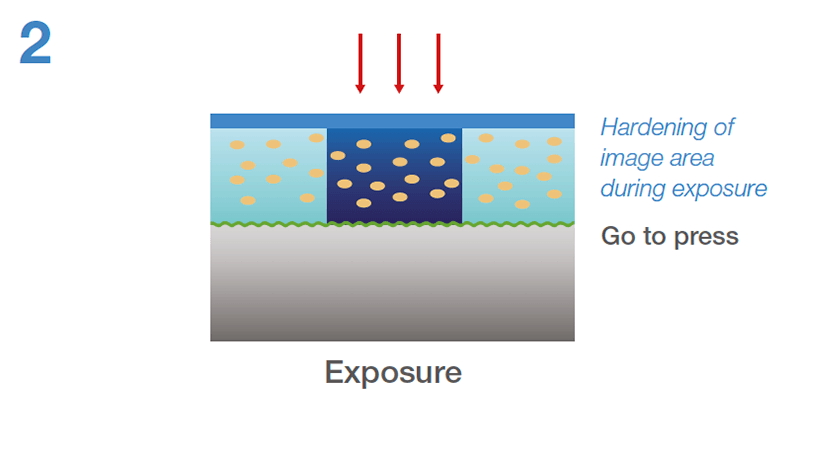 [image] Hardening of image area during exposure