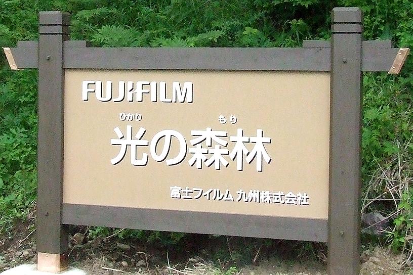 [画像]FUJIFILM 光の森林 看板