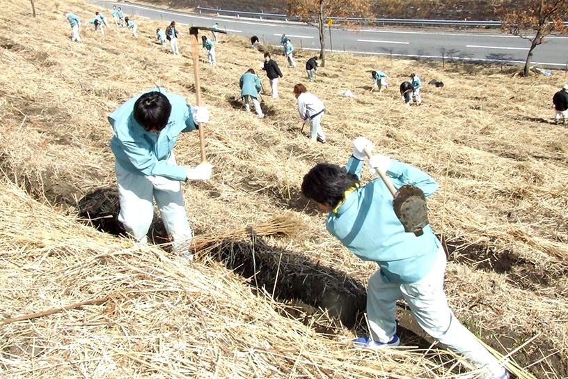 [画像]植樹活動の様子