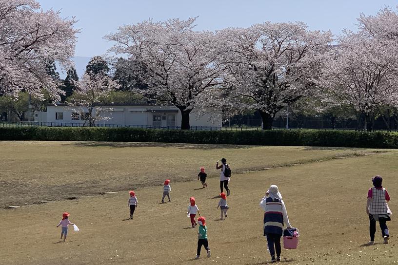 [画像]構内の桜を見学する来場者