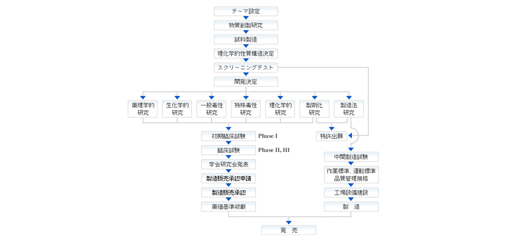 [図]新薬開発から承認までのフロー図