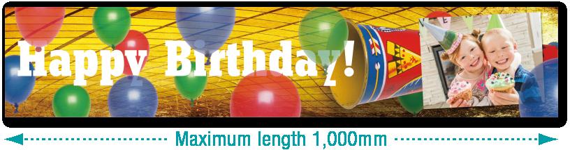 Longueur maximale 1000mm