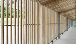 [photo] A wooden fence and roof over a hallway highlighting the horizontal and vertical lines distortion using other single focus Cinelens (F8)