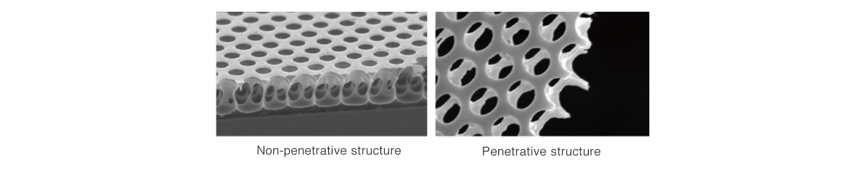 [image] A variety of polymers allow for the formation of 3D structural film