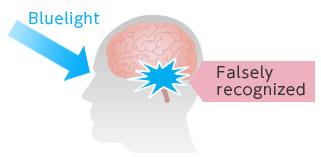 [immagine] La luce blu entra negli occhi e raggiunge parte del cervello che produce melatonina