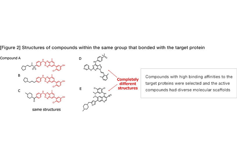[Figure2] Structures of compounds within the same group that bonded with the target protein