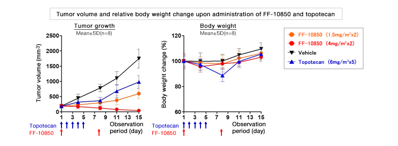 [Chart] Tumor volume and relative body weight change upon administration of FF-10850 and topotecan