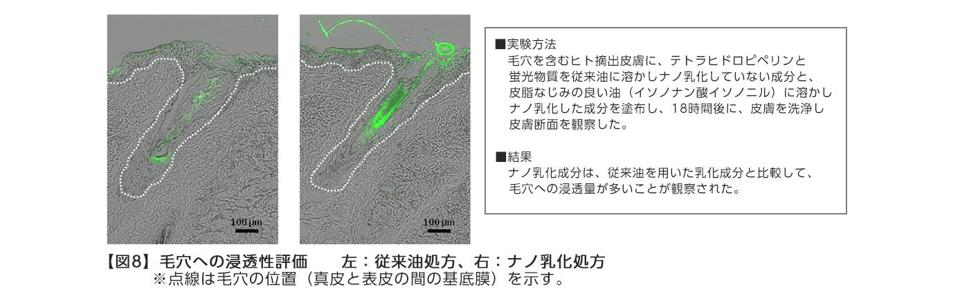 【図8】毛穴への浸透性評価  左:従来油処方、右:ナノ乳化処方