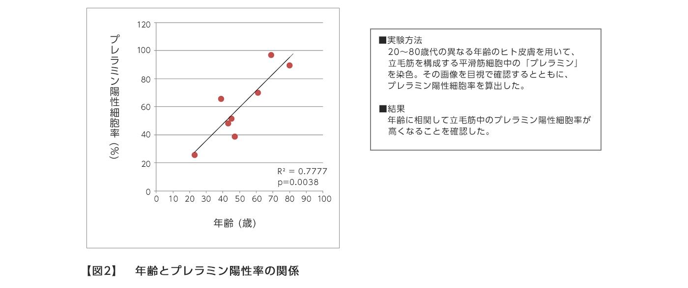 【図2】 年齢とプレラミン陽性率の関係
