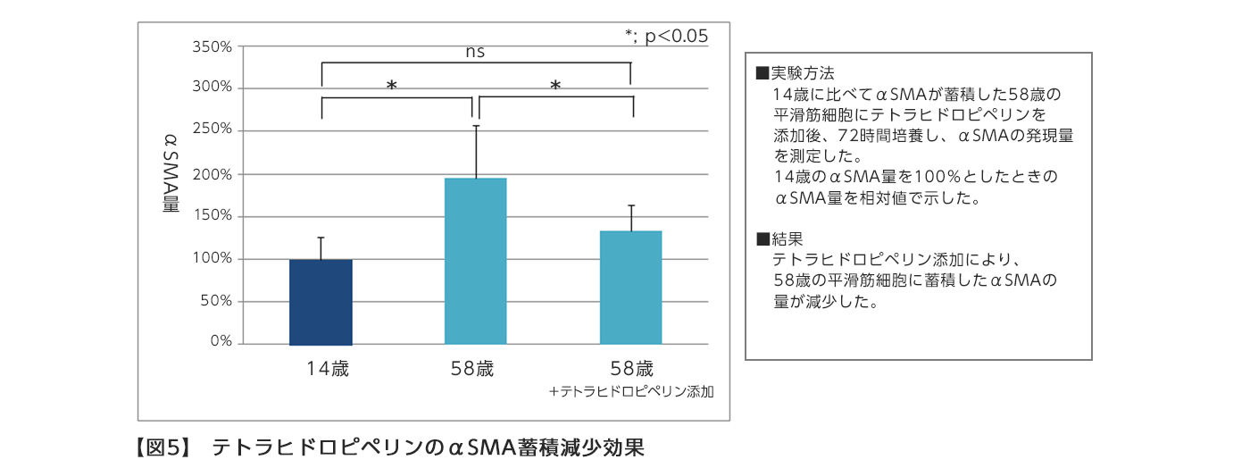 【図5】 テトラヒドロピペリンのαSMA蓄積減少効果