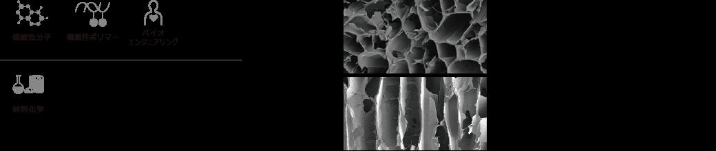 機能性分子 機能性ポリマー バイオエンジニアリング 材料化学