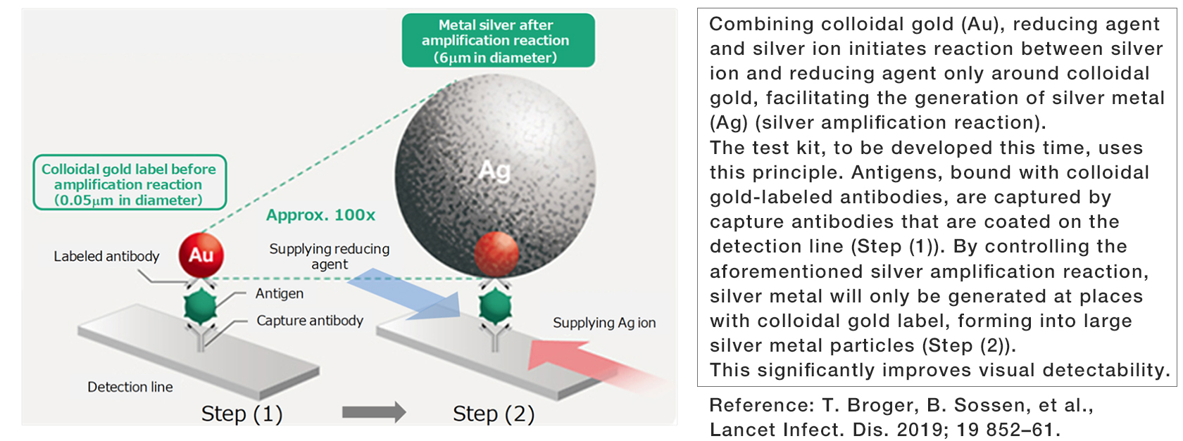 [Image]Silver amplification technology for use in the antigen test kit to be developed