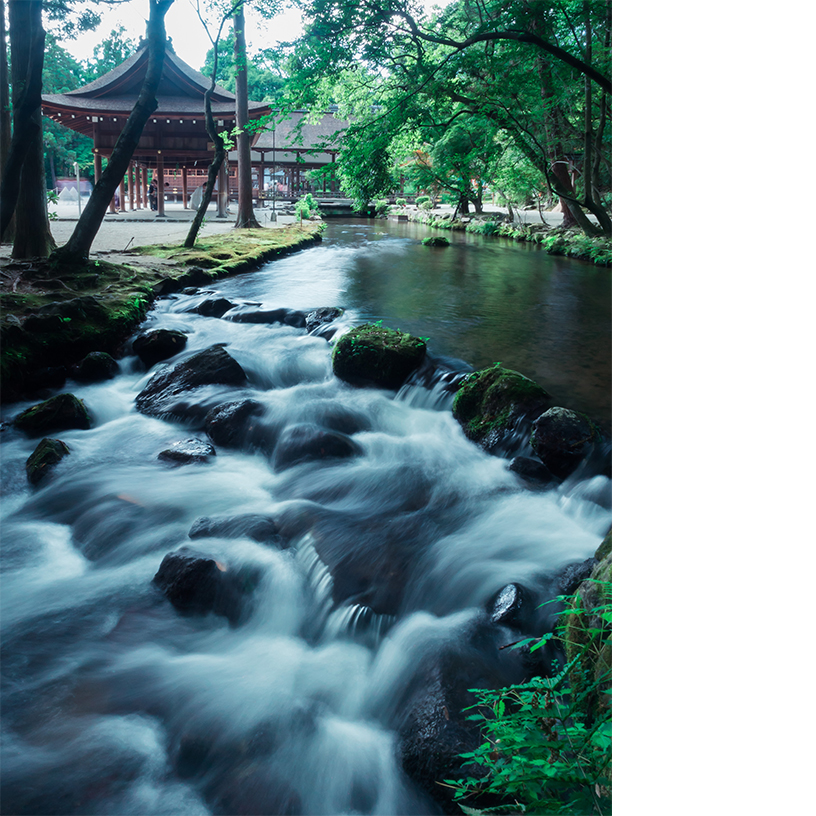 [写真]水野克比古 上賀茂神社 ならの小川 2014年 ©水野克比古