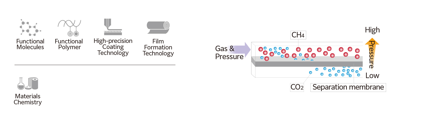 Functional Molecules Functional  Polymer High-precision Coating Technology Film Formation Technology