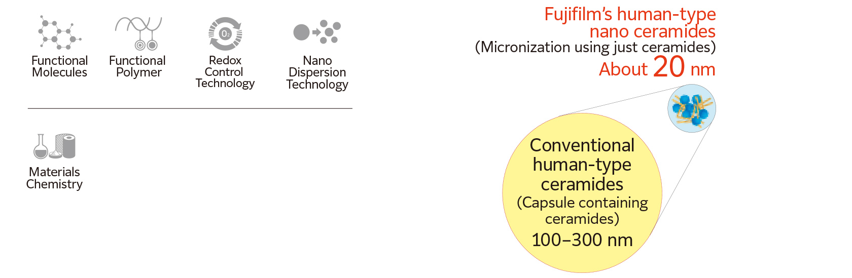 Functional Molecules Functional Polymer Redox Control Technology Nano Dispersion Technology Materials Chemistry