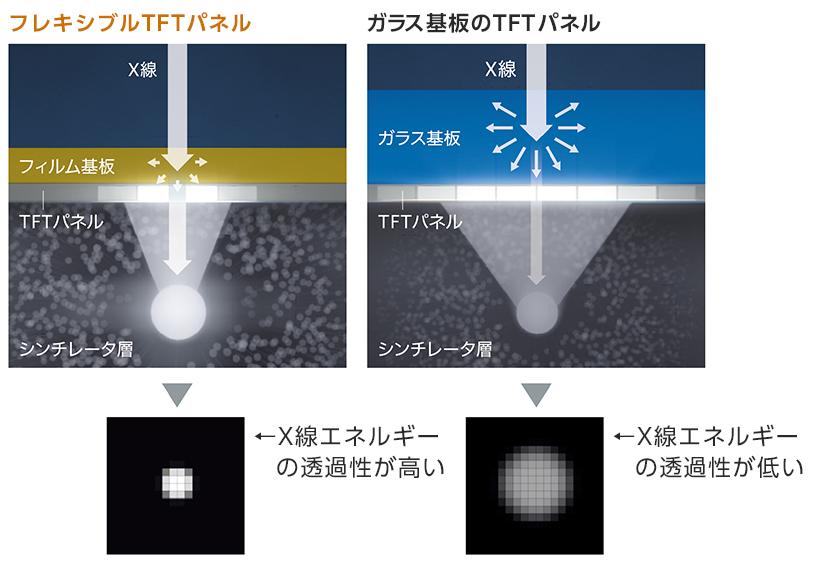 [画像]フレキシブルTFTパネルとガラス基板のTFTパネルの比較図