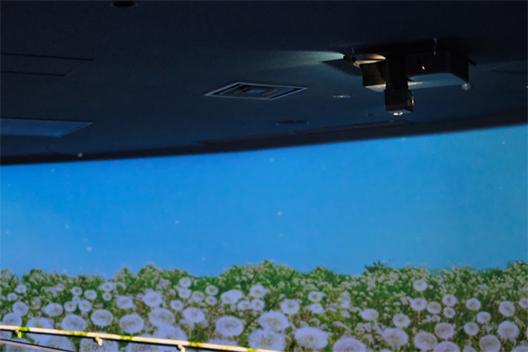 [写真]すみだ水族館