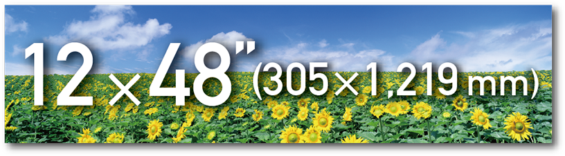 """[image] Field of sunflowers and blue sky photo with text overlay for 2 ×48"""" (305 ×1,219 mm) paper size"""