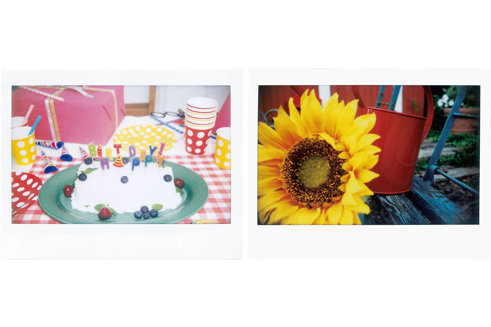 [photo] Close up of a cake and a sunflower using the Close-up lens on the Instax WIDE 300