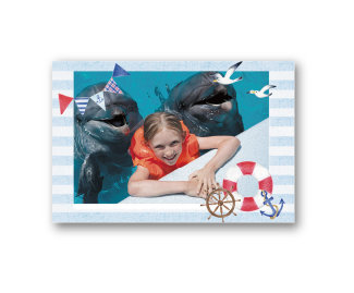 [photo] 돌고래 두 마리가 있는 풀장에서 해양 테마 테두리/디자인의 소녀 사진