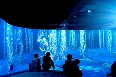 [사진] 푸른 바다 같은 색채로 물고기와 바다 식물의 이미지가 연출된 벽면 앞에 모여 앉아 있는 소규모 관람객