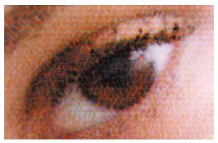 [image] Smooth and sharp print image quality of DE100