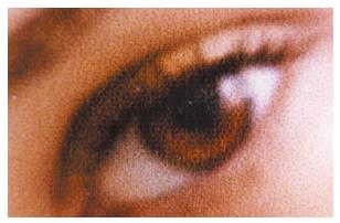 [image] blurry image of eye from general inkjet printer