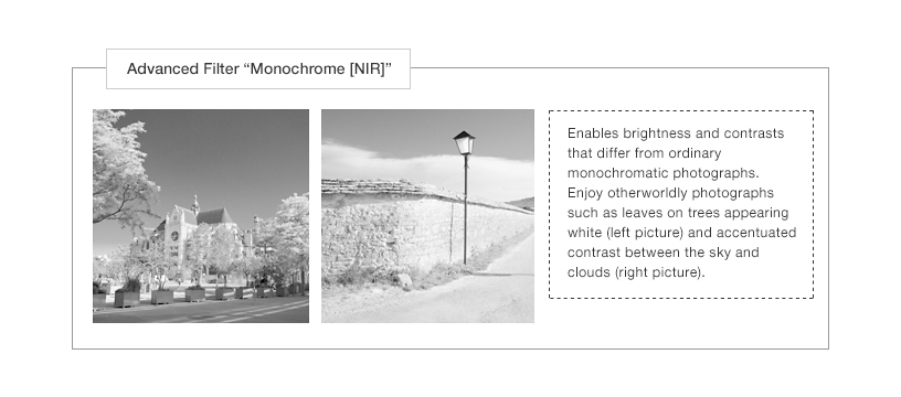 "[Photo]Advanced Filter ""Monochrome [NIR]"""