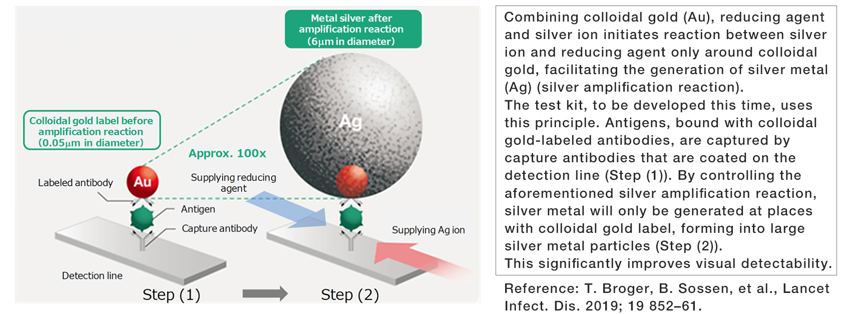 [image][The Silver Amplification Technology Applied in this Rapid Antigen Test]