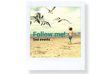 [photo] A little boy running on a beach with seagull over his head and the texts Follow me - sea events.
