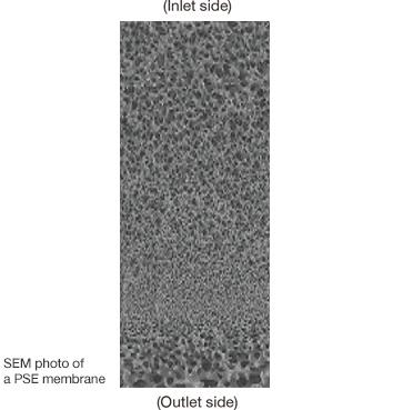ภาพถ่าย SEM ของแผ่นเยื่อ PSE