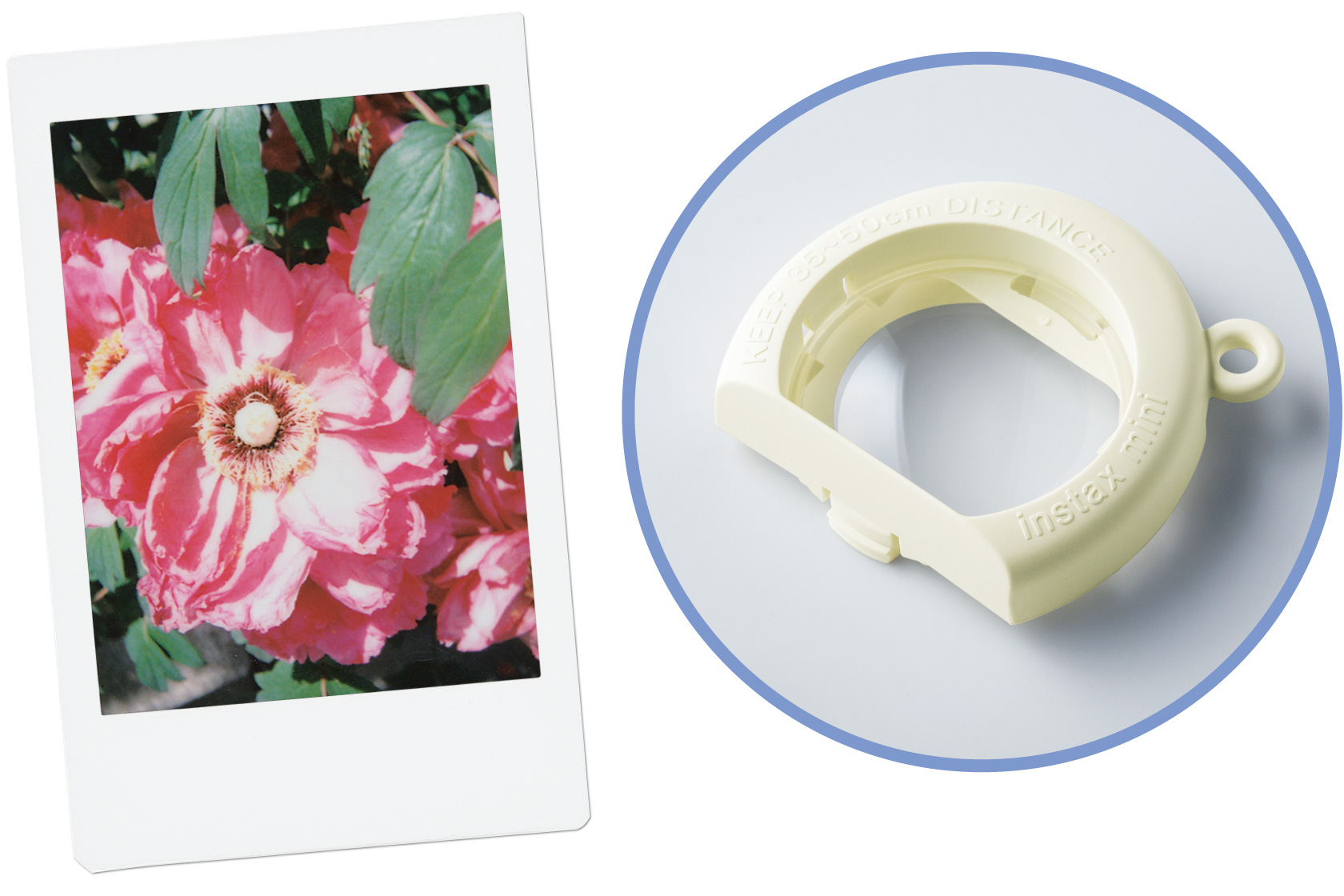 Image of Close-Up Lens Attachment and image of a pink flower