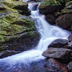 Artist Canvas 340 Waterfall scene