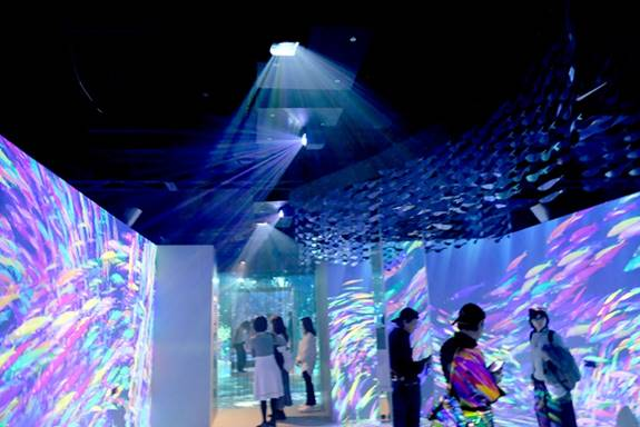 [photo] Small groups of visitors standing around in dimmed room, while overhead projectors project colorful schools of fish unto blank, white walls.