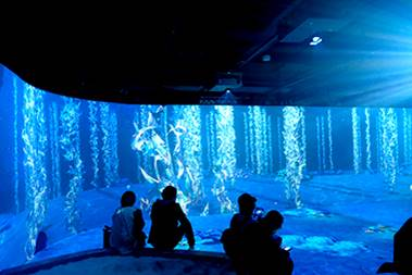 [photo] Small group of visitors sitting down together in front of wall with blue, ocean-like colors and images of fish and ocean plants