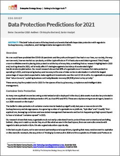 Data Protection Predictions for 2021 White Paper