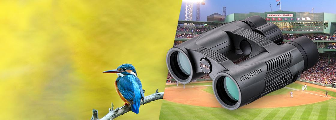 Banner image of KF Series binoculars over collage of baseball field and bird on the branch